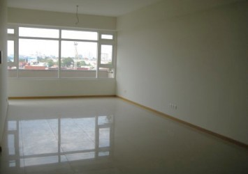 Unfurnished apartment for rent in Saigon Pearl- cheapest