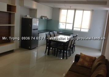 Apartment for rent at International Plaza in District 1 center
