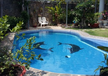 Beautiful villa for rent in Thao Dien with nice garden