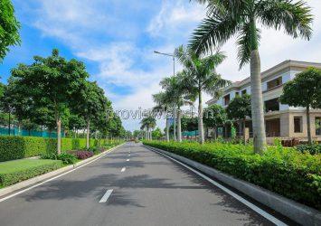 Sala Saroma Dai Quang Minh villa for sale has area of 581m2, 1 cellar + 4 floors