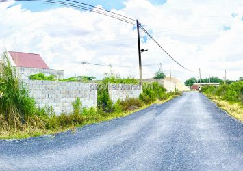 Land lot for sale at Go Noi street Phu Huu District 9 Thu Duc with area 15x41m