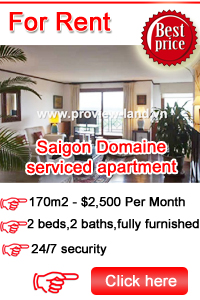 Saigon Domaine serviced apartment fot rent